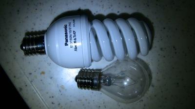 電球型蛍光灯と白熱電球