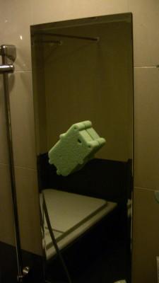 バスルームの鏡に巨大なカエルが