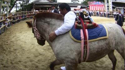 愛知県半田市平地町の駆け馬