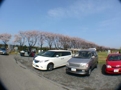 海軍道路わきの駐車場
