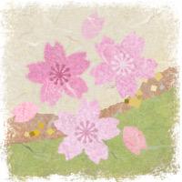 sakura-wasi01.jpg