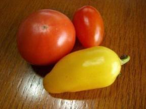 収穫野菜.jpg