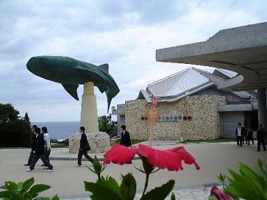 沖縄美ら海水族館入り口