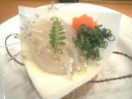 塩釜 鮨 すし哲 白魚