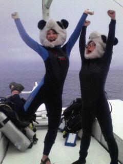 海に挑むパンダ