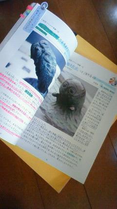 妖怪検定の教科書