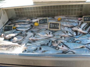 ヴィルフランシュ魚