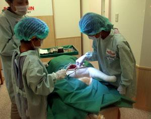 キッザニア動物病院2
