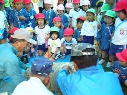 20090521幼稚園の子供も毛刈り.jpg