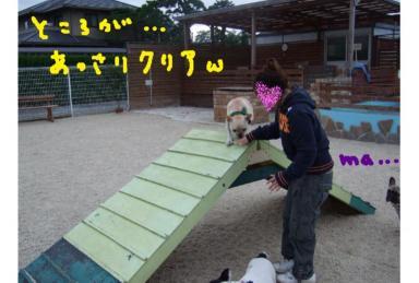 20080929.3