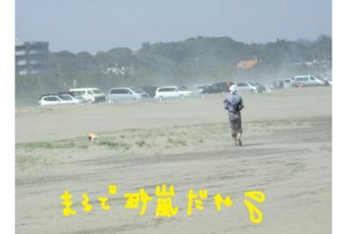 20090411.2