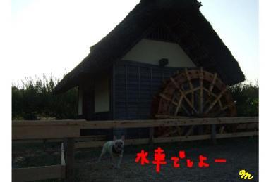 20090926.19
