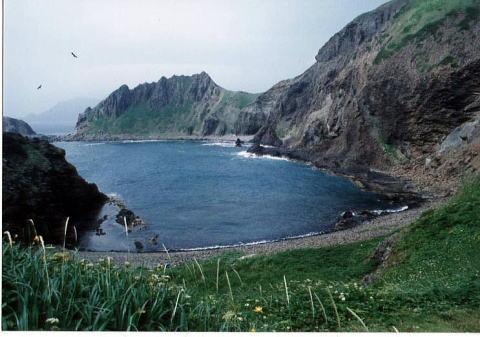 礼文澄海岬