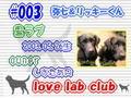 love lab club 会員証♪