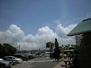 tomisato_kumo.jpg
