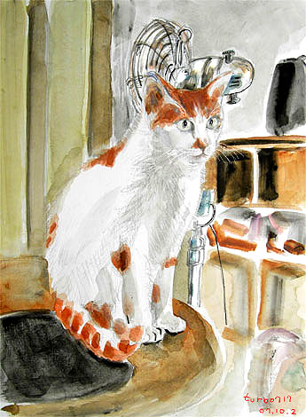 cat_kenta_table