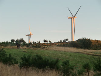 Hospital-Wind-generated electricity,Spain
