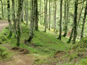 Pyrenees.Spain