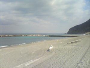 前浜1.jpg
