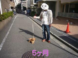 kubiwa2.jpg