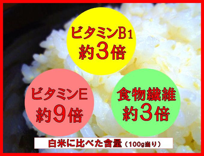 お米でサプリ・ビタミンプラス!