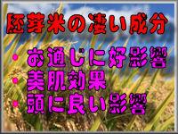 胚芽米の凄い成分!