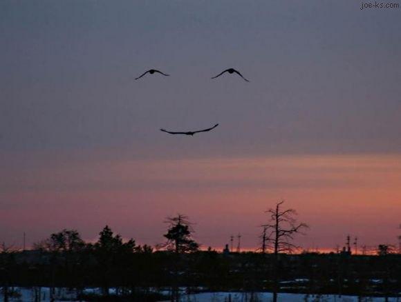 smilingsky