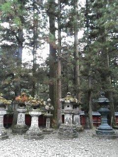 toshouguunoniwa