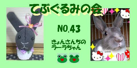 てぶぐるみの会43.JPG