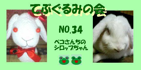 てぶぐるみの会34.JPG