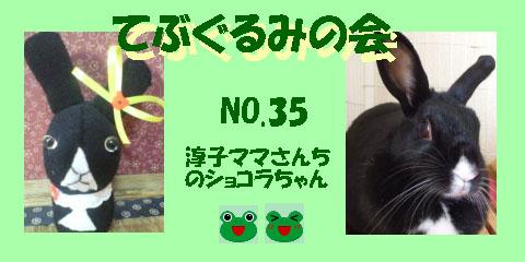 てぶぐるみの会35.JPG