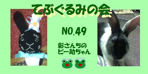 てぶぐるみの会49.JPG