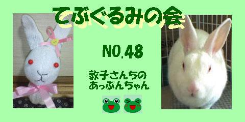 てぶぐるみの会48.JPG