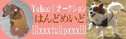 img38074f20zik4zj チューリップ.jpg