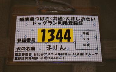 IMG_2963.JPG