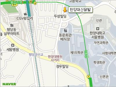 韓国 ソウル 漢陽大辛シンタッパル