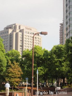 2010.10 011-1.jpg