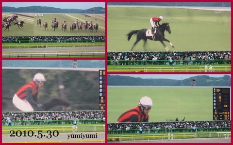 日本ダービー!2010-3.jpg