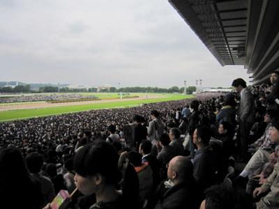 2010.5 084-1.jpg