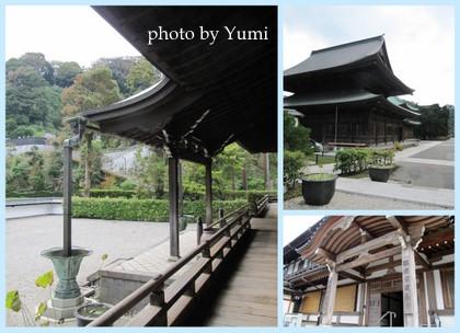 鎌倉の旅2011.9.3014.jpg