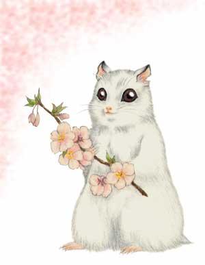 桜ゆきちゃん