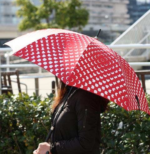 今年大注目の傘.jpg