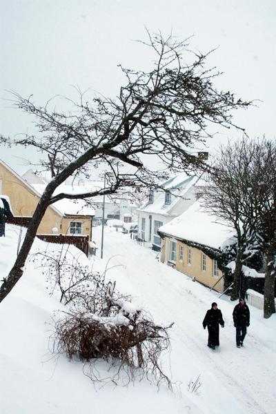 snow-in-Loenstrup.jpg