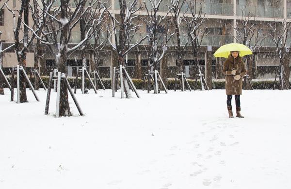 2012年2月29日東京の雪.jpg