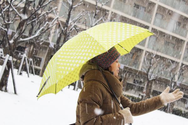 2012年2月29日東京の雪3.jpg
