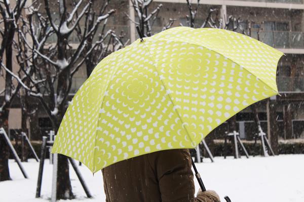 2012年2月29日東京の雪2.jpg