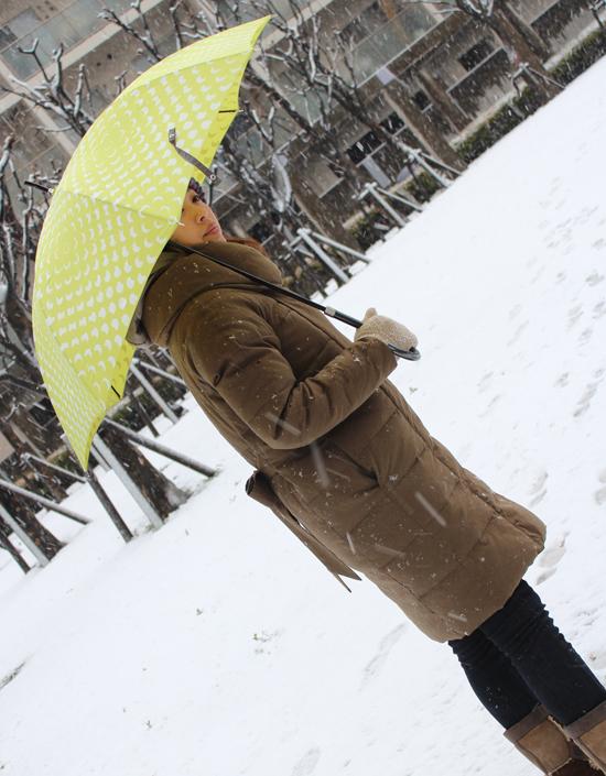 2012年2月29日東京の雪1.jpg