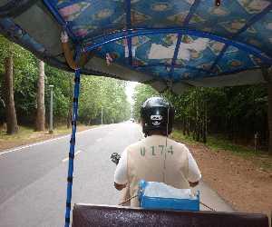 トゥクトゥクドライバー