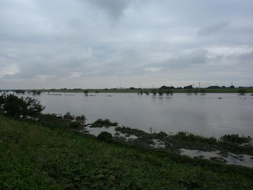 台風15号により増水した江戸川