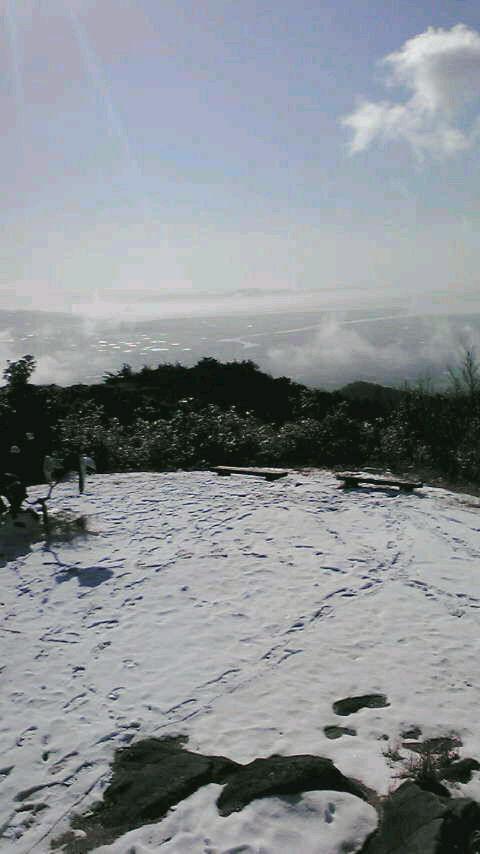 熊本_小岱山_2011.1.2